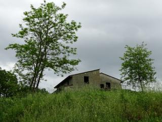 Foto 24/24 per rif. 1314