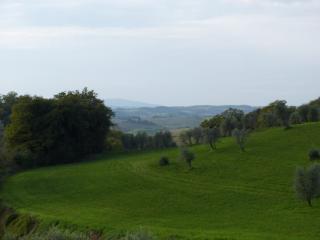 Colonica a Castelnuovo Berardenga (2/5)