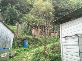 Foto 7/8 per rif. B001