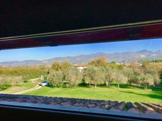 Villa singola a Luni (2/5)