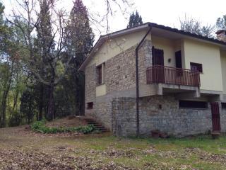 Casa semindipendente a Greve in Chianti (2/5)