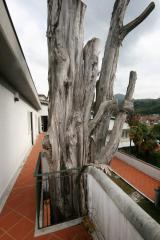 Foto 58/66 per rif. 050