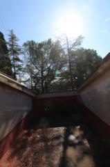 Casa singola a Colle di Val d'Elsa (4/5)