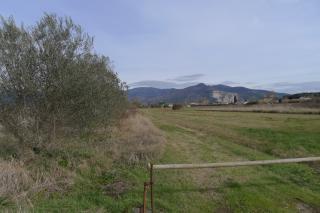 Foto 1/9 per rif. T101