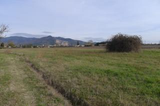 Foto 3/9 per rif. T101