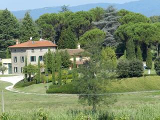 Villa singola a Quarrata (2/5)