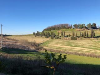 Villetta bifamiliare a Collesalvetti (2/5)