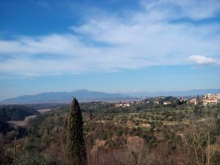 Terratetto a Montopoli in Val d'Arno (1/5)