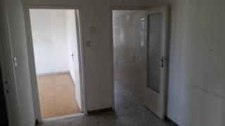 Foto 6/12 per rif. 3 vani in porta a lucca k i inn