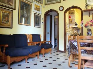 Villa singola a Camaiore (1/5)
