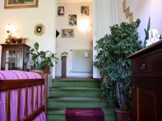 Villetta bifamiliare a Camaiore (3/5)