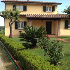 Villa singola a Crespina Lorenzana (2/5)