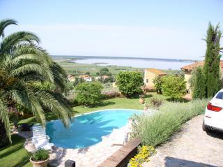 Foto 7/30 per rif. villa massaciuccoli