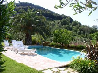 Foto 6/30 per rif. villa massaciuccoli