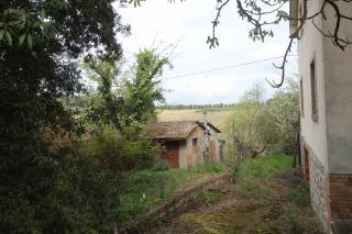 Villa singola a Monteroni d'Arbia (4/5)