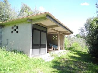 Annesso agricolo in vendita a Cerreto Guidi (FI)