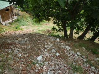 Terreno agricolo a Montopoli in Val d'Arno (4/5)