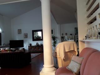 Villa singola a San Miniato (4/5)