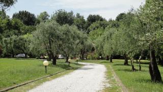 Villa singola a Montignoso (3/5)
