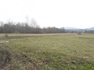 Terreno agricolo in vendita a Licciana Nardi