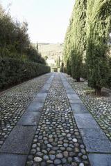 Villa singola in vendita a Pisa (39/68)