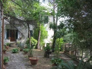 Casale a Lucca (5/5)