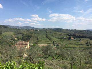 Terreno agricolo in vendita a Firenze
