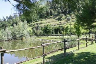 Casale a Montopoli in Val d'Arno (2/5)