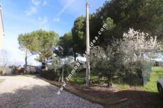 Porzione di casa a Castellina Marittima (3/5)