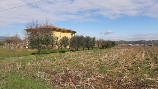 Casa singola a Santa Maria a Monte (3/5)