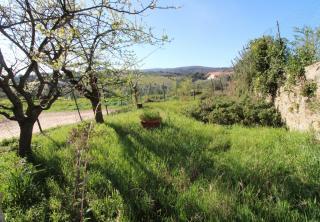 Porzione di casa a Casciana Terme Lari (3/5)