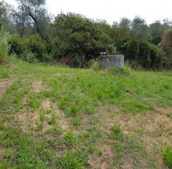 Terreno agricolo a Buggiano (4/5)