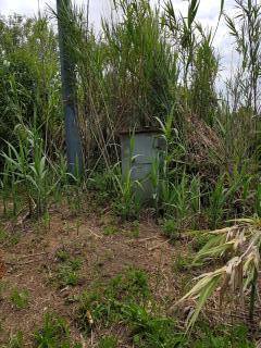 Terreno agricolo a Buggiano (3/5)