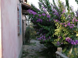 Casa singola a Vicopisano