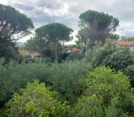 villa singola CASTIGLIONCELLO