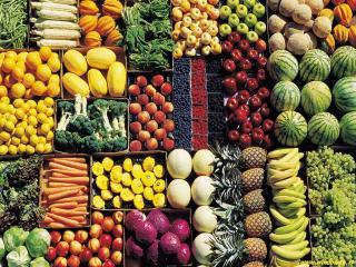 Alimentari in vendita a Empoli (FI)