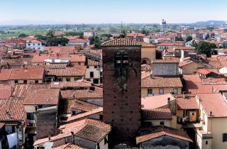 Negozio in vendita a Castelfranco di Sotto (PI)
