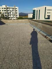 Foto 12/14 per rif. 56/332