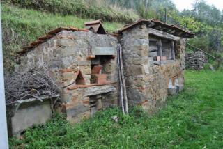 Foto 3/10 per rif. rust petrognano