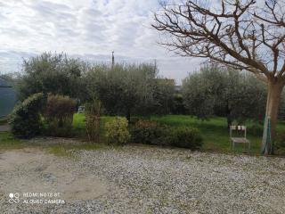 foto carosello 955094