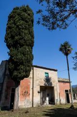 Historical building on sale to San Giuliano Terme (11/81)
