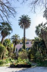 Edificio storico in vendita a Pisa (85/100)