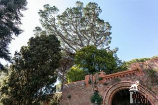 Villa on sale to Pisa (11/143)