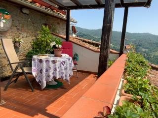 Terratetto in vendita a Pescia (PT)