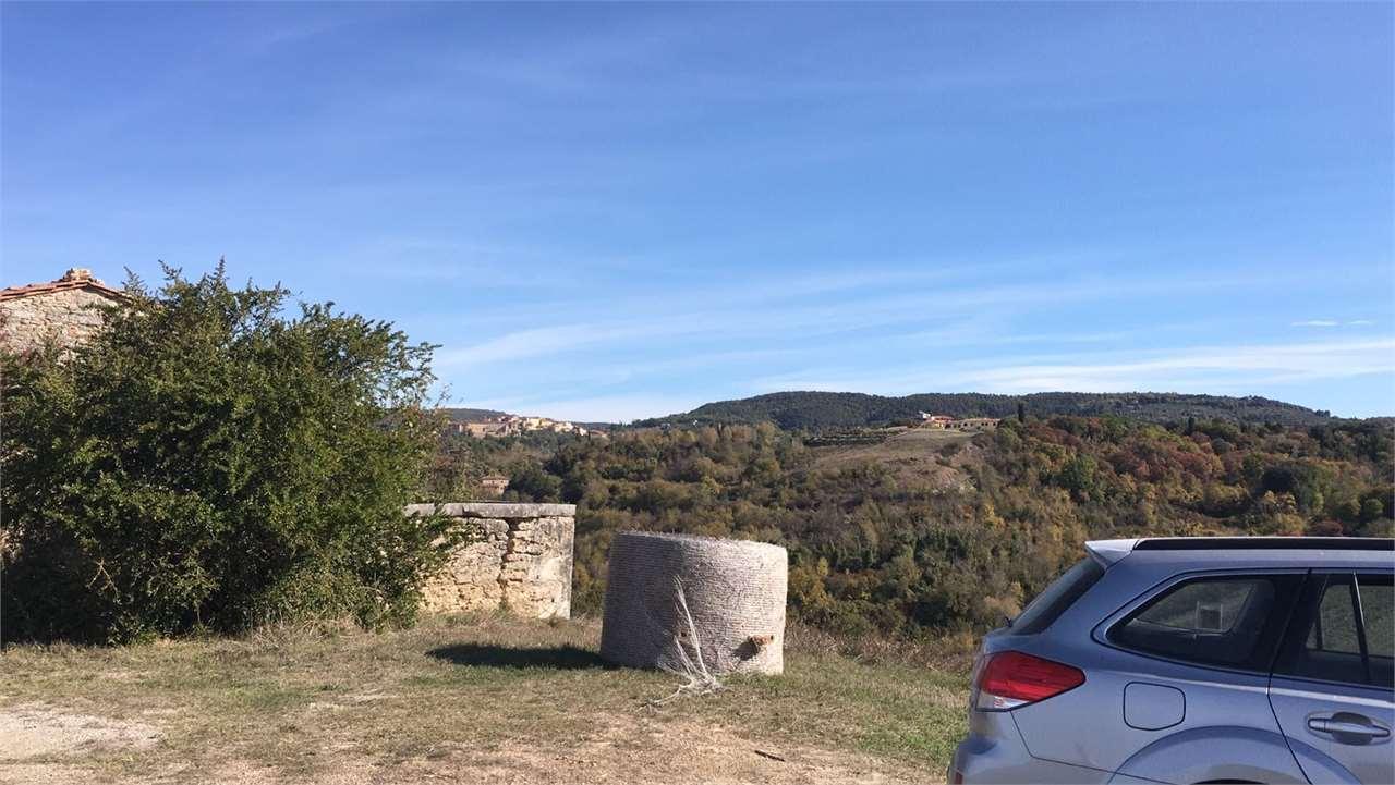 Azienda agricola a Castelnuovo Berardenga (2/5)