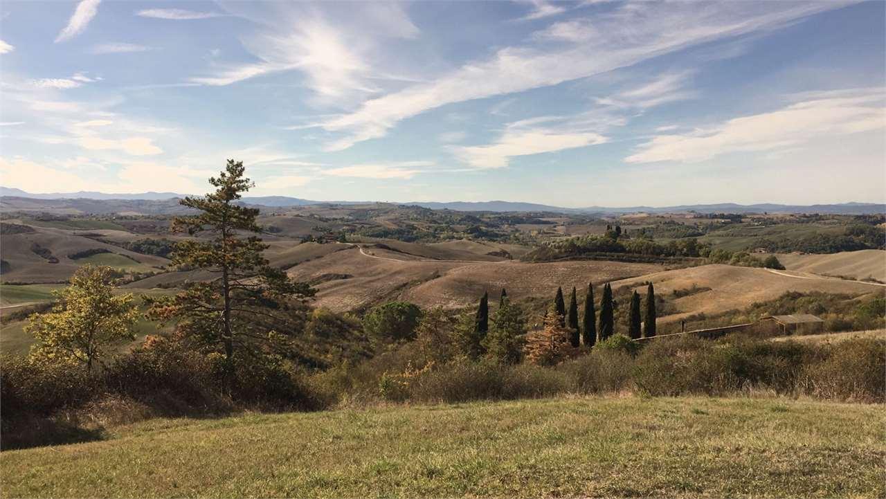 Azienda agricola a Castelnuovo Berardenga (3/5)