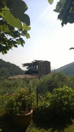 Foto 6/7 per rif. rustico tre colli