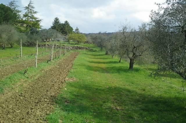 Rustico a Civitella in Val di Chiana (5/5)