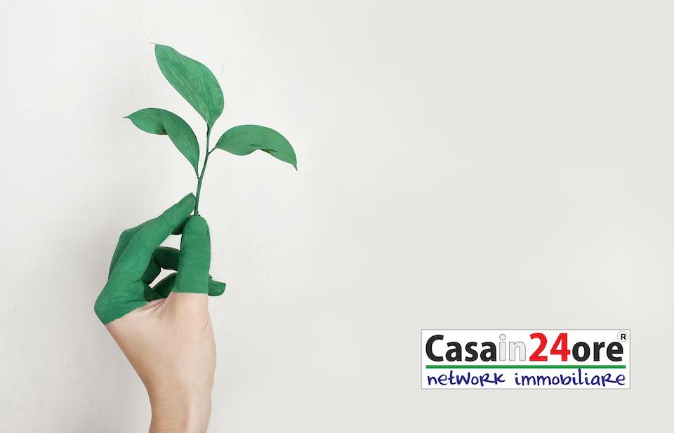 3 abitudini green da seguire a casa per aiutare l'ambiente.