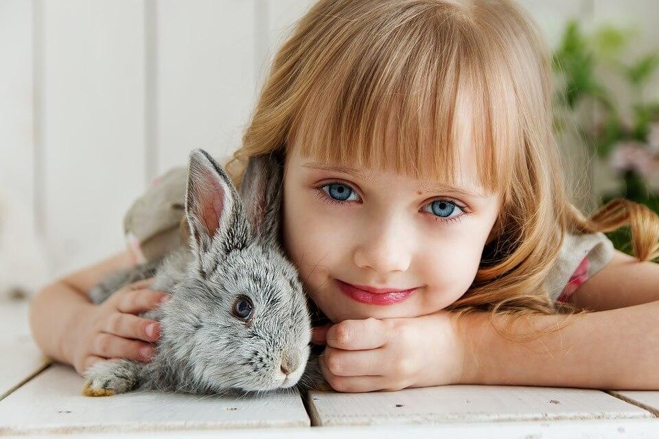 Animali in condominio: quali si possono tenere?